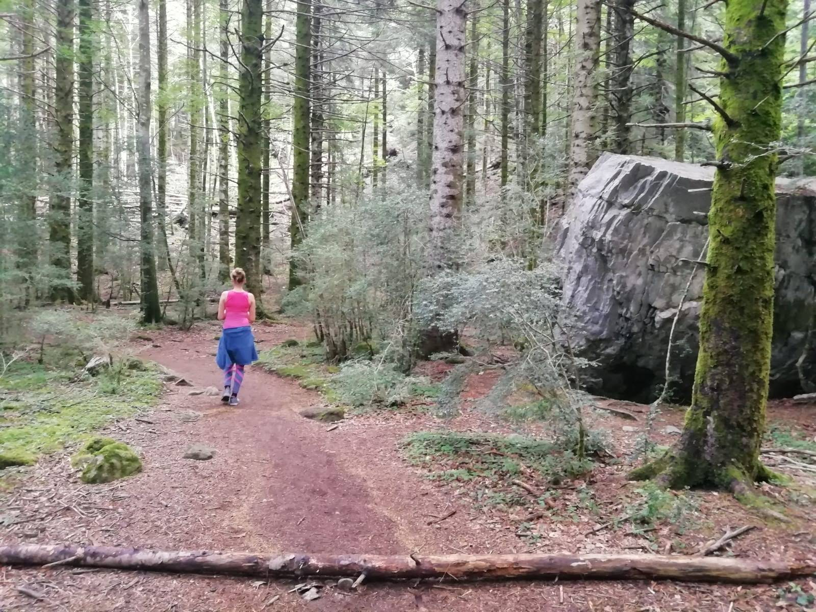 Krátke treky z dediny Torla viedli naprieč lesom